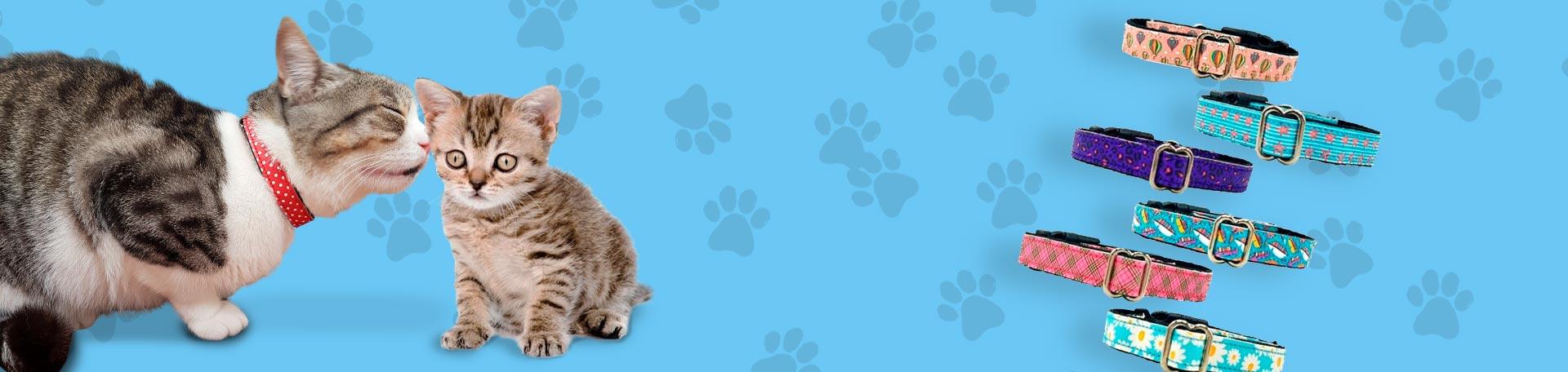 Collares XS (Gatos y Perros Toy)